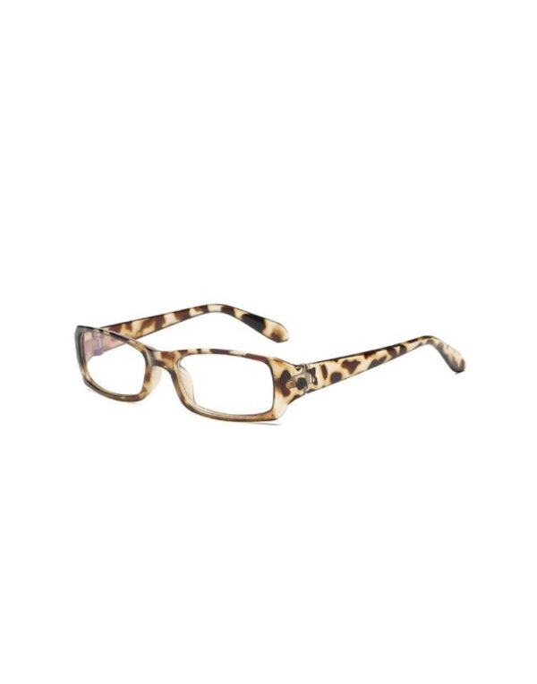 Cheetah computer glasses